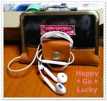 iPod case1.JPG